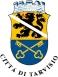 Logo Città di Tarvisio